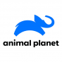 Animal Planet Logo 2020 Channel 553 TV Packages
