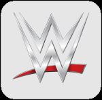 WWE on the Go